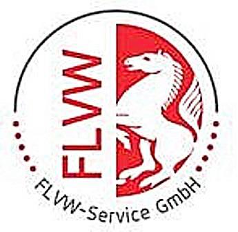 Ballbestellungen zu Sonderkonditionen für FLVW-Kreise und Vereine
